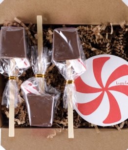 holiday peppermint 3-pack of hot chocolate sticks
